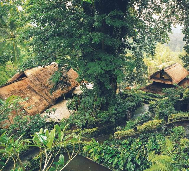 Немецкий художник Вальтер Шпис переехал на Бали в 1927 году. Здесь он построил фантастический дом в прохладном климате Убуда. Вместе со своими питомцами – какаду и обезьяной – он глубоко погрузился в культуру этого загадочного острова.