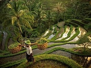 Новый Год 2014 на Бали  - День 1