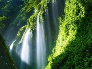 Тур на Бали и Яву: групповое путешествие - Ноябрь 2013 | День 6