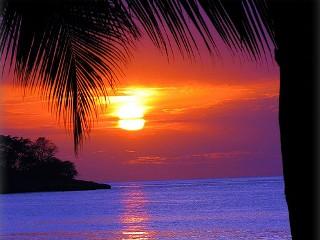 Групповой приключенческий тур на Ямайку | Февраль 2014 - День 10