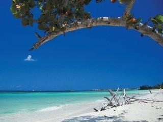 Групповой приключенческий тур на Ямайку | Февраль 2014 - День 11