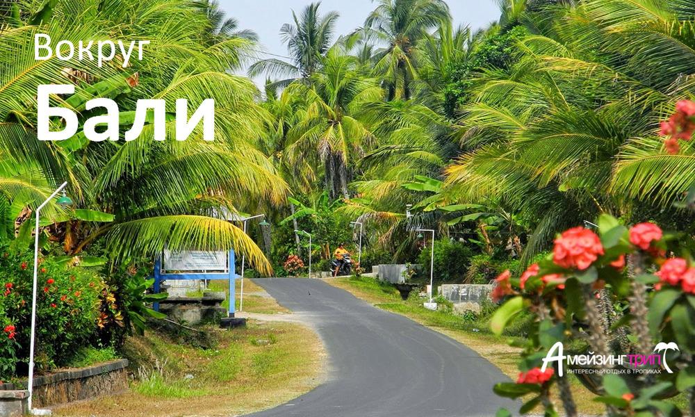 Вокруг Бали