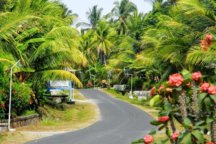 Бали - Паласари