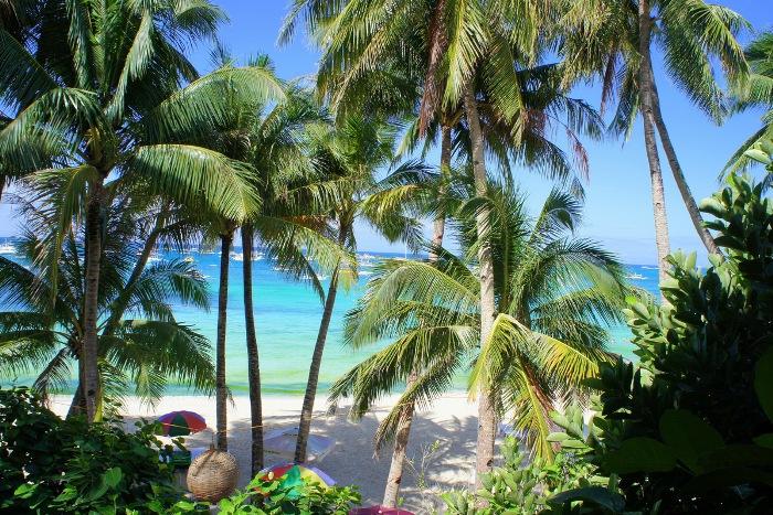 Пальмы Белого Пляжа