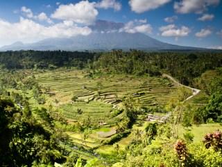 Путешествие на Бали и Ломбок - День 11