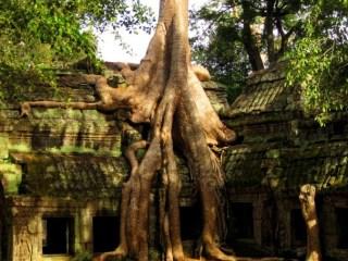 Путешествие в Камбоджу и Таиланд: День 9