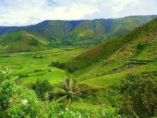 Путешествие на Суматру - День 8