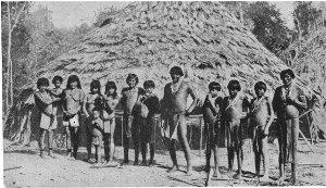 Араваки Ямайки