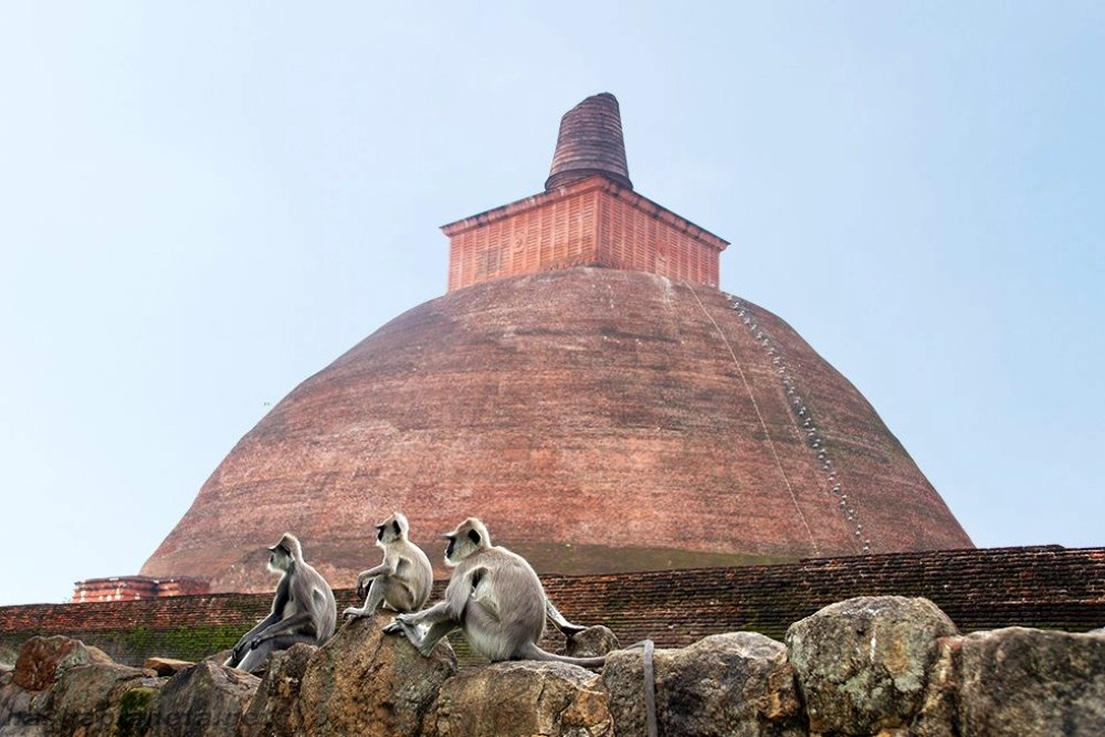 Экскурсионный тур: Шри-Ланка - Анурадхапура